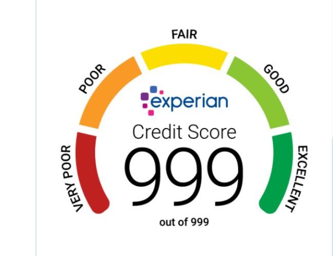 perfect_credit_score